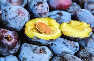 Amandon de prune