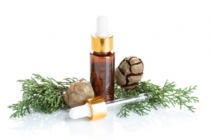 huile essentielle de cyprès de provence